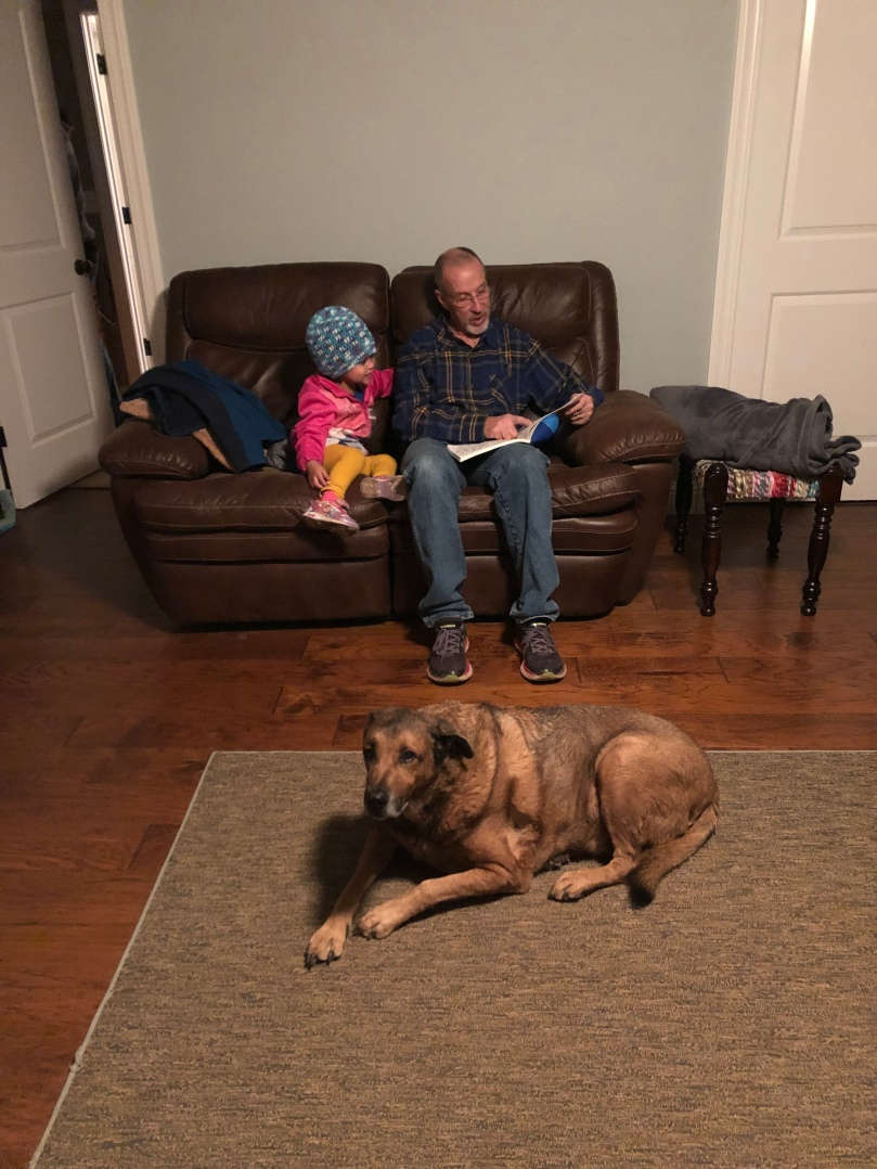 Little girl with grandpa on brown couch reading a book and dog laying on rug